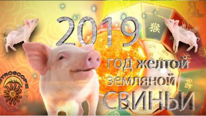 Китайский гороскоп на 2019 год расскажет всем знакам Зодиака, чего ожидать
