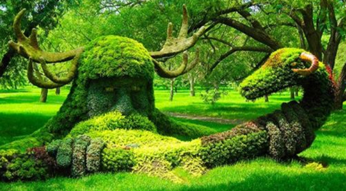 В руках садовников деревья и кустарники превращаются в настоящую сказу.